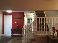 Professional pro painters best prices and Fully Insured