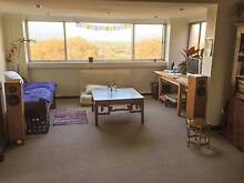 Large bedroom in a bright, quiet and friendly home close to UNSW Kingsford Eastern Suburbs Preview