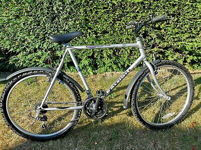 Raleigh mountain bike used