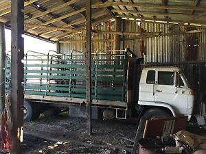 Cattle truck Anna Bay Port Stephens Area Preview