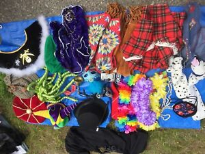Dress Up/Costume Collection $30