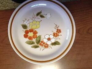 6 MOUNTAIN WOOD COLLECTION STONEWARE DINNER PLATES Wilson Canning Area Preview