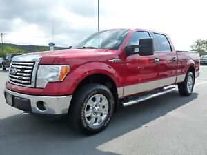 Ford F-150 Cab SuperCrew 4RM 157 po XLT, JAMAIS ACCIDENTÉ