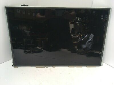 iMac (24-inch, Early 2009) LCD Screen