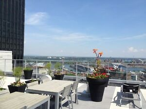 Old,Vieux,Montreal,Downtown,Centre Ville,1,bedroom,chambre,condo