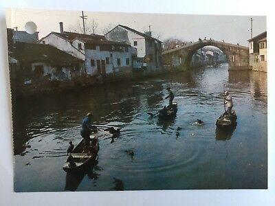 Cormorants Catching Fish Wuxi China Boats Fisherman 4X6 Postcard A38