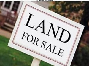GOLDEN GROVE - TWO BLOCKS OF LAND FOR SALE Golden Grove Tea Tree Gully Area Preview