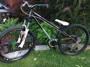 Specialized dirt jumper