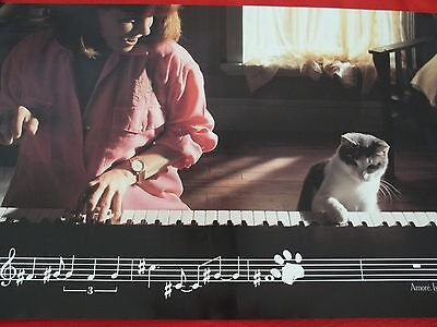 """Collectible Poster for Amore Cat Food 16"""" x 27"""" Heinz Promotion"""