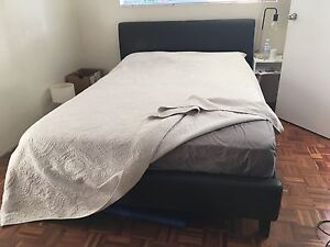 Harvey Norman Black leather queen bed frame Dulwich Hill Marrickville Area Preview