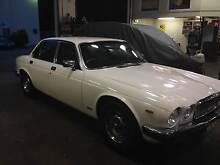 1982 Jaguar XJ6 Sedan Gymea Sutherland Area Preview