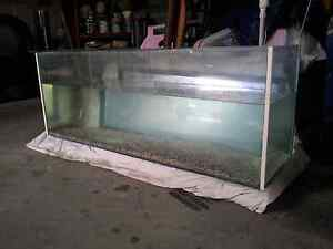 4 foot fish tank and canister filter and others Stanford Merthyr Cessnock Area Preview