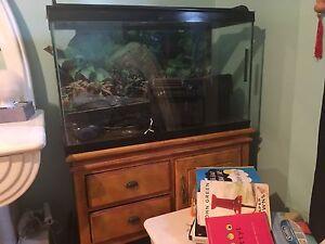 Aquarium 30 gallons