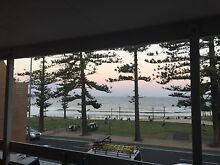 Dee Why frontbeach Roomshare Dee Why Manly Area Preview