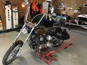 2008 Harley Davidson soft tail custom