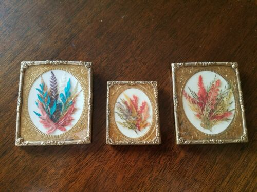 Three (3) Antique Victorian Vintage Framed Pressed Flowers Feathers