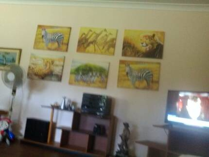 African Animal canvas art paintings