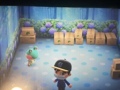 Raymond Audie Judy or Any Villager Plus Bonus! Animal Crossing : New Horizons