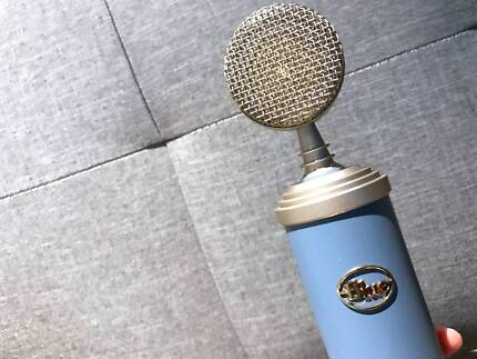 Blue Bird Microphone - Studio Condenser