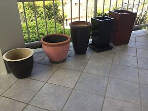 5 garden pots for sale together or seperate Soldiers Point Port Stephens Area Preview