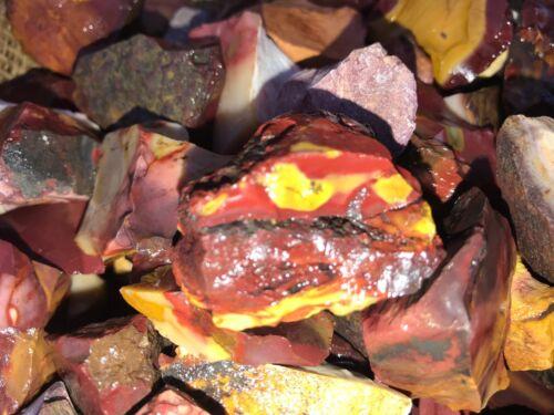 500 Carat Lots of Mookaite Jasper Rough - Plus a FREE faceted Gemstone - Nice