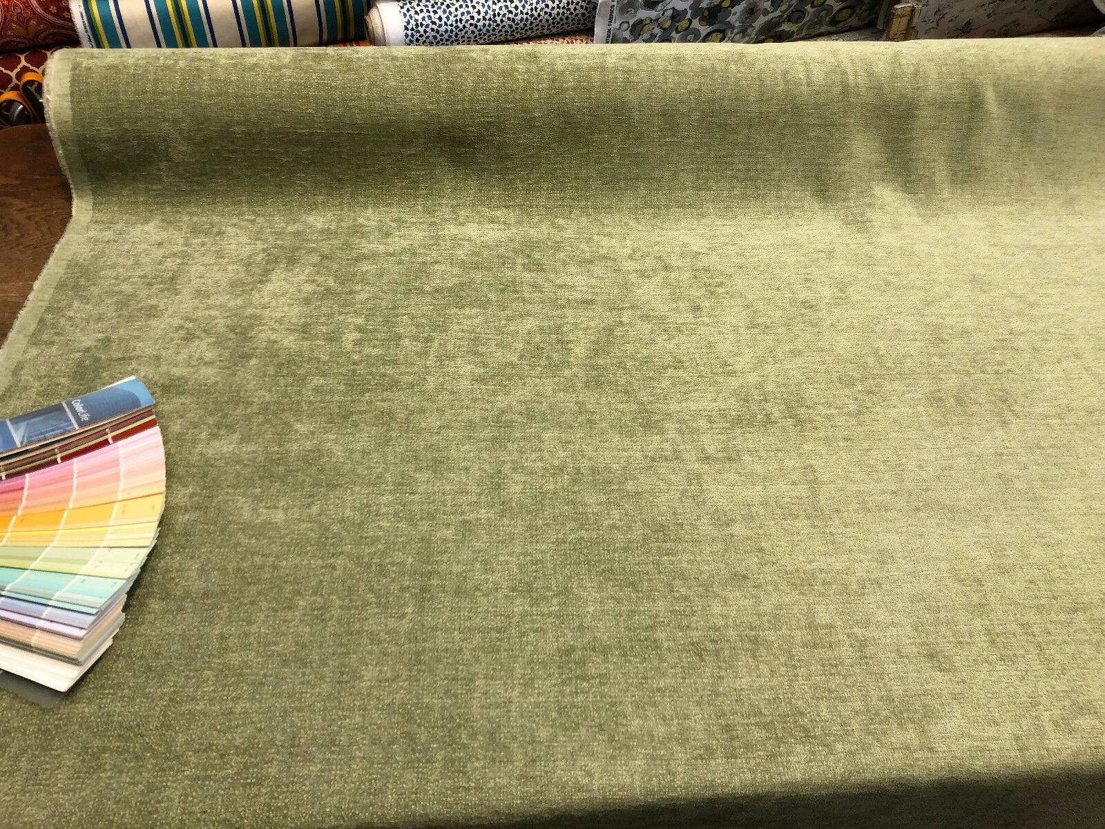 Roxy Fern Soft Chenille Upholstery Fabric by the yard sofa c
