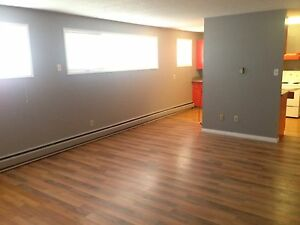 LARGE  SK 1 BEDROOM APARTMENT