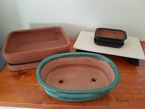 Bonsai Pots Kinross Joondalup Area Preview