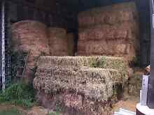 Lucern Hay For Sale Morpeth Maitland Area Preview