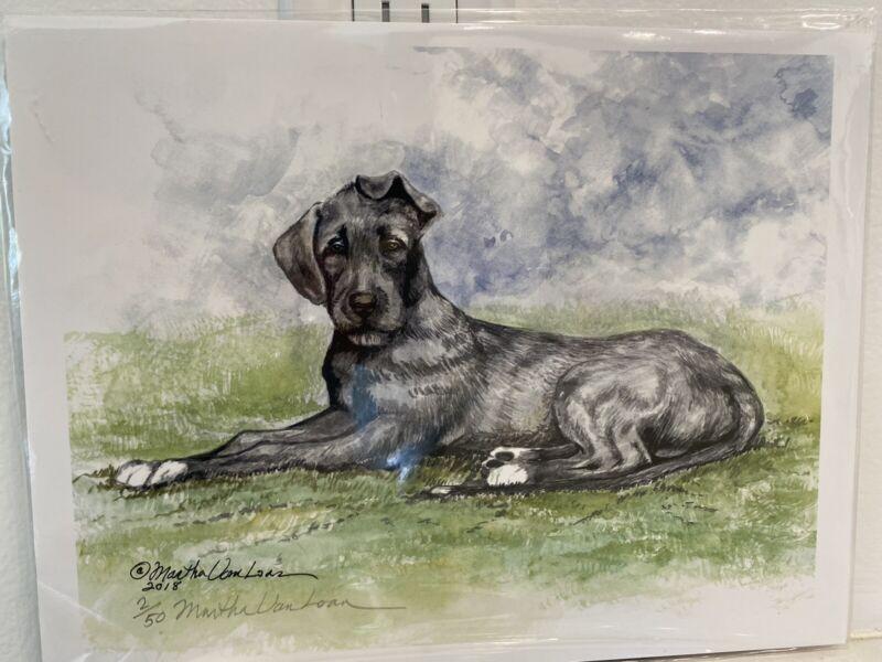 Irish Wolfhound Puppy Original Watercolor 8x10 By Martha Van Loan