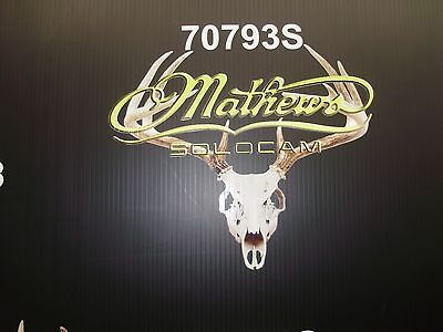 "Mathews decal skull 22/""W x 17/"" H"
