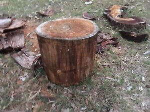 Wood stumps form $50 Kemps Creek Penrith Area Preview