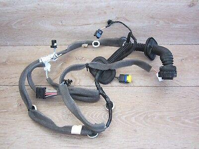 Cable Loom Door Door Wiring Harness Front Right 241242108r Renault Scenic III Jz