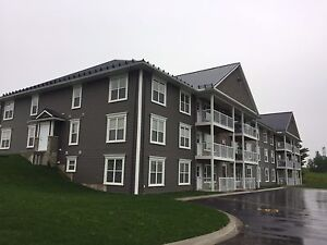 Cliffedge Apartments 1195/month Year to Year lease