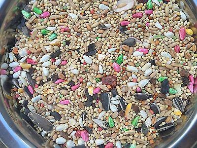 Dynasty Vita cockatiel 25lb fruits, seeds, safflower, grains Conure, cockatiel
