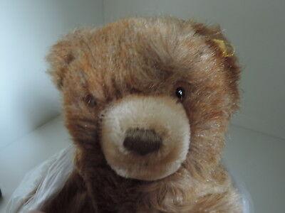 Steiff, Floppy Teddy,mit K/F