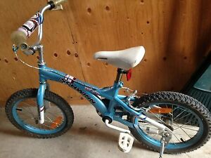 Schwinn Fly girl bike