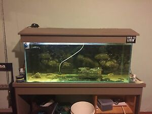 4ft fish tank Gawler East Gawler Area Preview