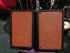 Two 160W Passive PA speakers.