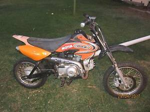 70CC PIT BIKE Waterford West Logan Area Preview