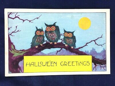 Vintage Embossed Halloween Postcard Whitney Worcester Mass Three Owls on Branch