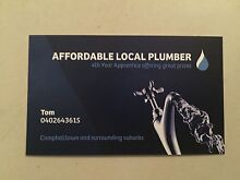 LOCAL AFFORDABLE PLUMBER Campbelltown Area Preview