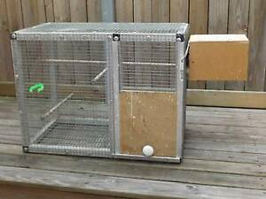 Budgie Breeding Cage Torquay Fraser Coast Preview