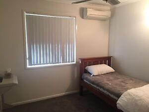 Available room Daisy Hill Logan Area Preview