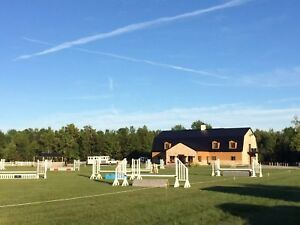 Horse Farm and Business for sale