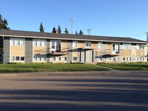 LARGE SK 1 BEDROOM APARTMENT  May 1