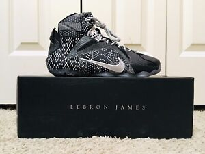 15d84413797 Lebron 12 - BRAND NEW IN BOX
