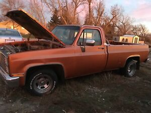 1981 Chevy C10 for sale