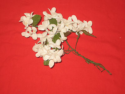 Vintage 1950s Millinery flower - White Cotton Stephanotis w/ leaves - Wire Stem