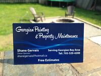 Property maintenance/clean up